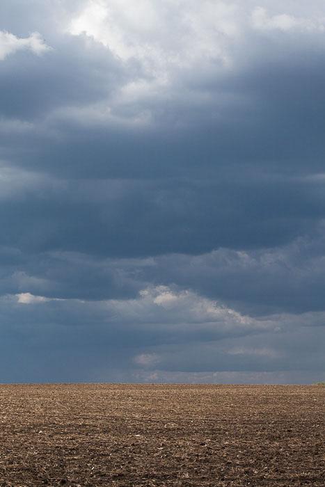 01-Gibaud-Canada-Manitoba-Photography-Wheat