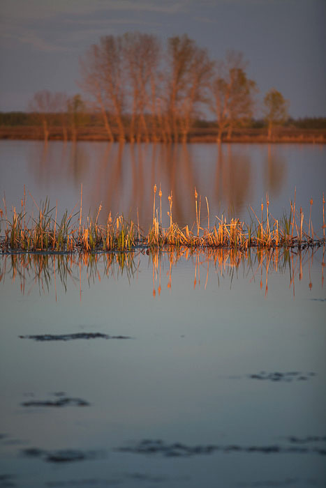 09-Gibaud-Canada-Saskatchewan-Shellbrook-Photography-Lake