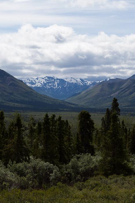 02-Gibaud-Transam-Photography-USA-Alaska-Mont McKinley-Denali National Park