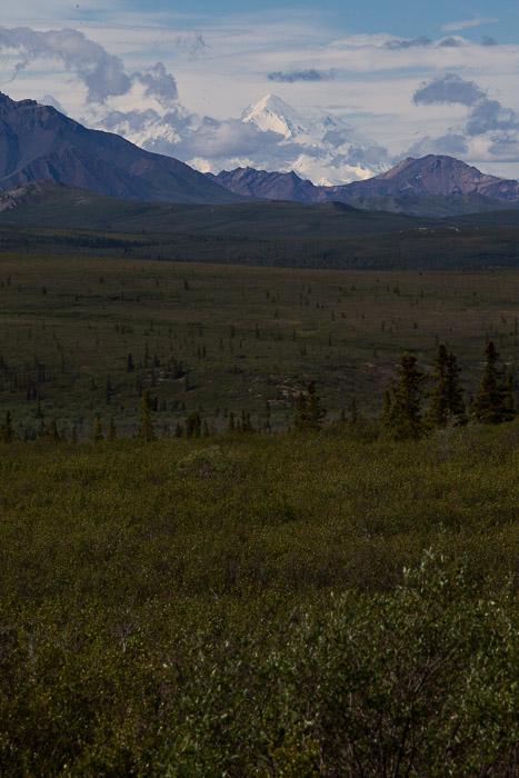 04-Gibaud-Transam-Photography-USA-Alaska-Mont McKinley-Denali National Park