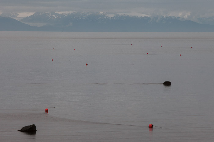 01-Gibaud-Transam-Photography-USA-Alaska-Homer