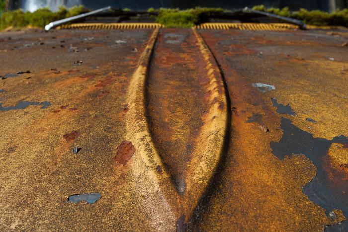01-Gibaud-Transam-Photography-USA-Alaska-Juneau-Mousse