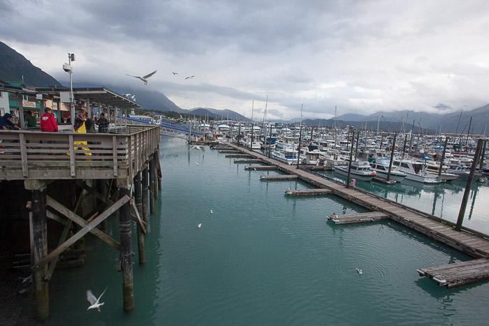 02-Gibaud-Transam-Photography-USA-Alaska-Seward