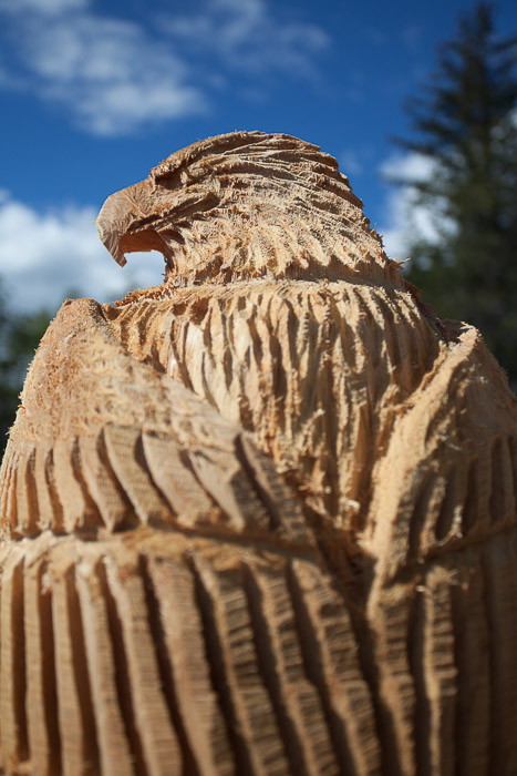 03-Gibaud-Transam-Photography-USA-Alaska-Sculpture-chainsaw