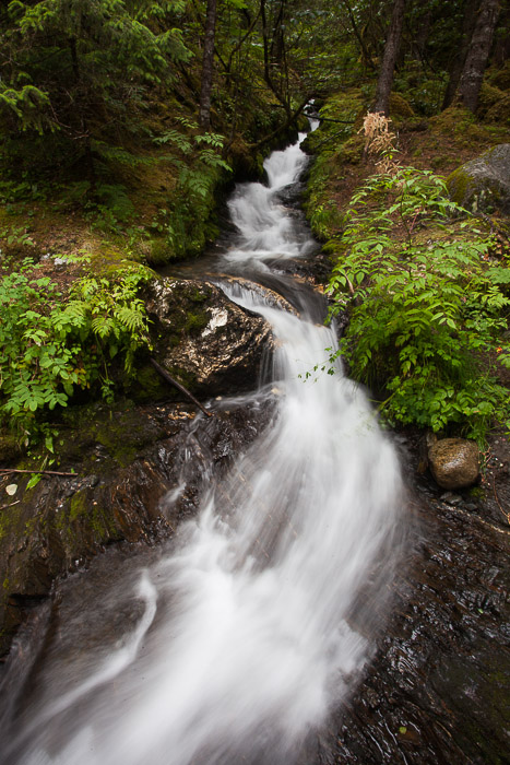 04-Gibaud-Transam-Photography-USA-Alaska-Juneau-Rainforest-Creek