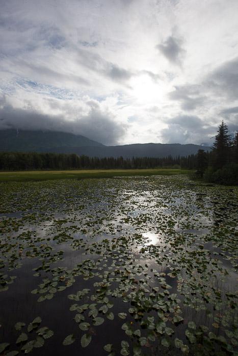 05-Gibaud-Transam-Photography-USA-Alaska-Seward